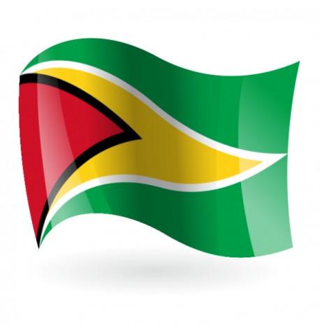Bandera de la República Cooperativa de Guyana