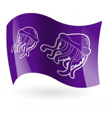 Bandera Peligro Medusas Fondo color Mod. 1