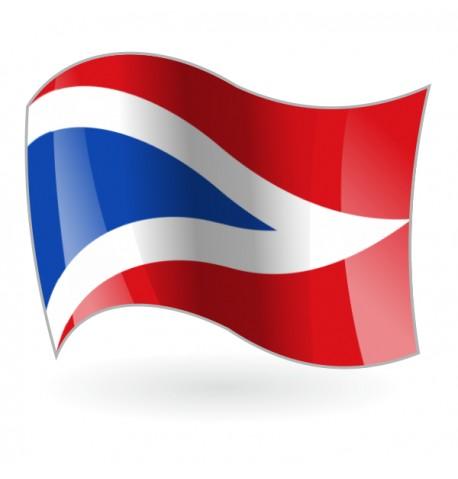 Bandera de Palacios del Sil