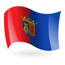 Bandera de Torre - Pacheco