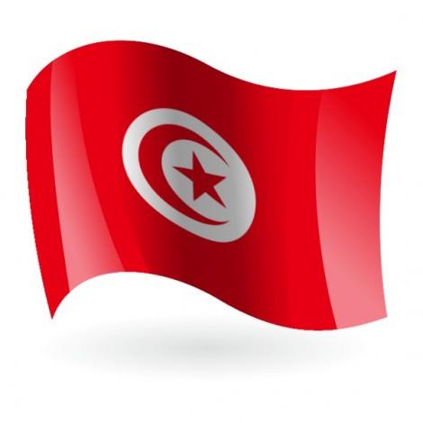 Bandera de Túnez ( República Tunecina )