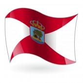 Bandera de Vigo